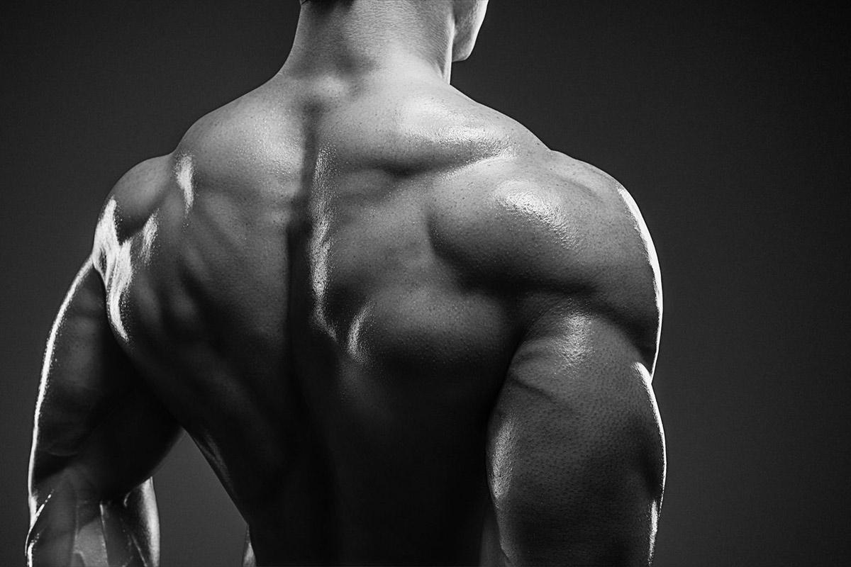 Mirafit-Back-Exercises-Pull-Ups